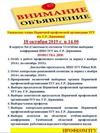 VI отчётно-выборная конференция ППО ТГУ им. Г.Р. Державина